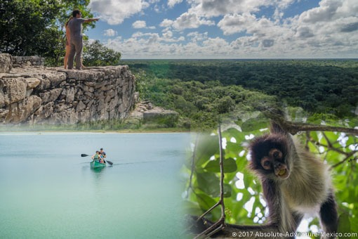 coba-punta-laguna-monkey-private-tour