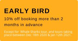 Early bird tulum tours